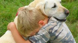 labrador-pet-therapy13-657x360